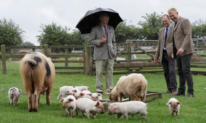 Britain's Prince Charles Cotswold Farm Park