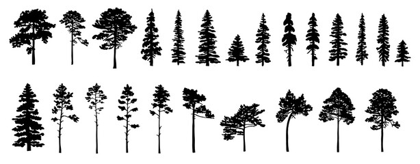 Set of tree silhouettes of different types and shapes isolated on white background. Illustration.