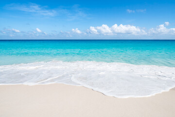 Wall Mural - Tropical beach with white sand and turquoise water