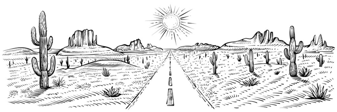 Desert road panorama landscape, vector illustration. American desert with cactuses and sand rocks. USA journey.