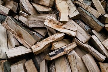 Coupe de bois de chauffage en forêt