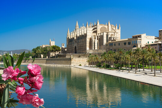 The Cathedral of Santa Maria of Palma, also La Seu is a Gothic Roman Catholic cathedral located in Palma, Mallorca, Spain.