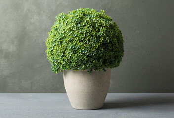 Artificial plant in ceramic flower pot on grey wooden table