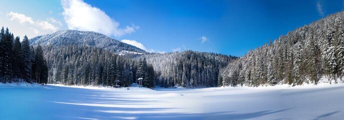 Synevir Lake Ukraine panorama of the lake in winter.