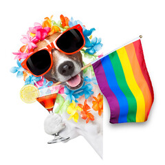 Stores à enrouleur Chien de Crazy gay pride dog with rainbow gay flowers