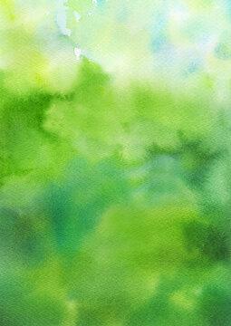 木漏れ日のような、光のある緑色の背景 水彩イラスト