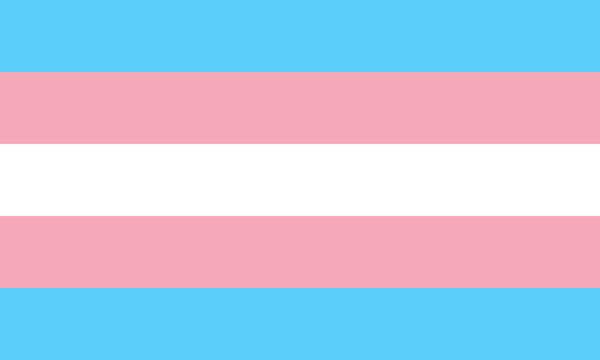 transgender flag symbol