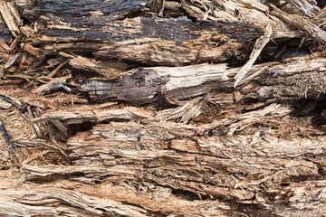 Closeup Ground at Lumberyard / Broken pieces of tree wood and bark as background, partly burnt