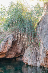 Natural swimming pool with bird nests at the Ongongo