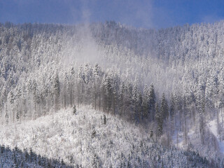 Winter day on the slope of the Carpathian mountains. Ukraine.