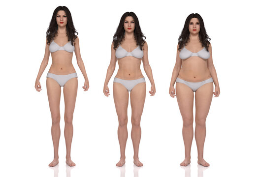 3D Rendering : standing female body type illustration : ectomorph (skinny type), mesomorph (muscular type), endomorph(heavy weight type)