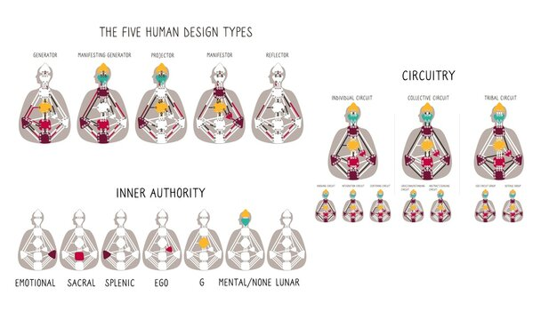 Generator Projector Manifestor Reflector. Five human design types. Circuitry. Authority types. illustration
