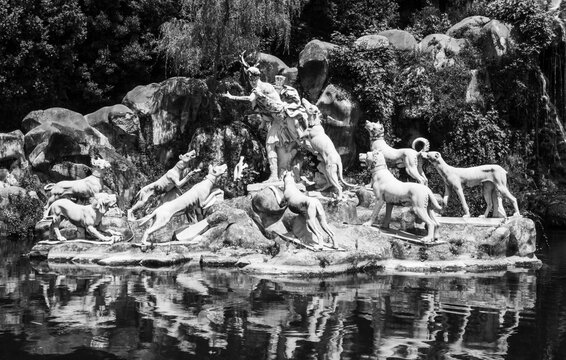 Black and white photo of marble statues representing a man being hunted in a pond inside a palace´s garden in Italy
