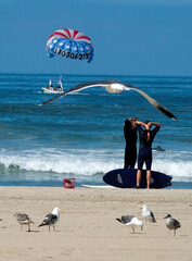 A parasail is seen during the outbreak of the coronavirus disease (COVID-19) at Venice Beach in Los Angeles