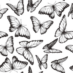 Vector seamless pattern with beautiful butterfly in engraving style. Hand drawn texture with nymphalid isolated on white.