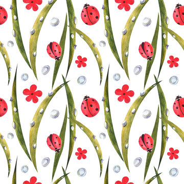 Watercolor seamless pattern with ladybugs. Against the background of daisies, leaves and dew.