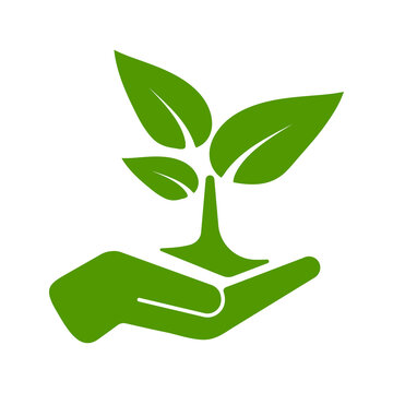 Green tree growing in hand vector  illustration. Hand holding plant tree icon isolated on white background. Save nature concept. Sprout logo template. Green color simple invironmental protection sign.