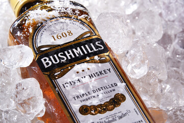 Bottle of Bushmills Original Irish whiskey in crushed ice