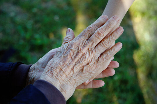 Old and young holding hands. Family love concept. Healthcare background.
