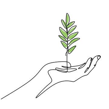 One line drawing of sprout in hand. Seedlings grow in the hands of trees. Environment Earth Day single line vector art. Concept of growing and love earth. Hand-drawn illustration. Vector