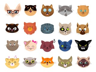 Cats avatars. Flat cat faces. Isolated kitten heads with eyes. Animals funny emoji characters, emoticon stickers. Cute pet clipart vector illustration. Cat avatar face, head of set cartoon animal