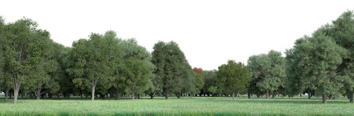 Customizable field