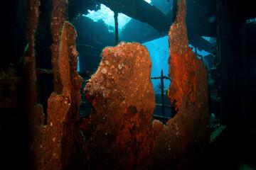 Wrecks Of Abu Nuhas