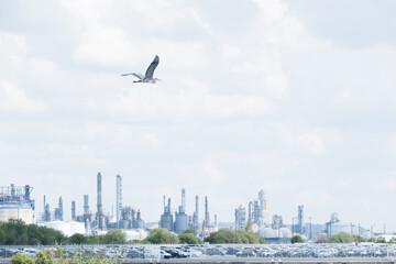résilience ndustrie usine cheminée entreprise fabrication pollution fumée énergie