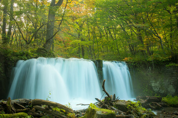 Printed roller blinds Waterfalls Scenic View Of Waterfall In Forest