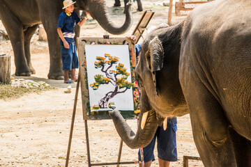Obraz Elephant Painting On Canvas Using Paintbrush - fototapety do salonu