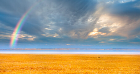 Dark blue and grey stormy clouds on evening sky over the salt lake with wheat field - Ankara, Turkey