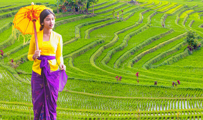 Portrait of balinese girl in traditional costume with yellow umbrella walking on rice terrace path