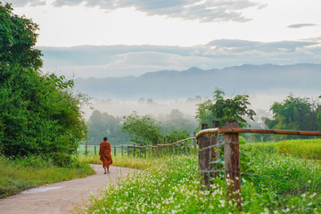 Unidentified monk walks down the hill in the morning
