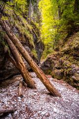 Obraz Waterfall with ladder in canyon, sucha bela  in Slovak Paradise, Slovensky Raj National Park, Slovakia - fototapety do salonu