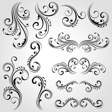 Vector set of floral design elements.