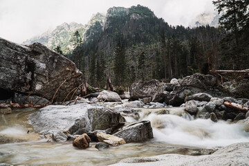 Fotorolgordijn Bos rivier A Rocky River With Green Mountains In The Slovakia High Tatra
