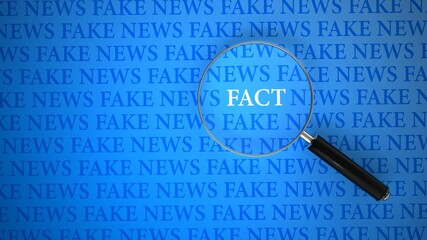 Fake News Loupe Facts