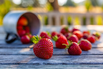 Delicious ripe strawberries on a table in the garden.