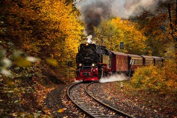 Fototapeta Steam Train Against Trees During Autumn obraz