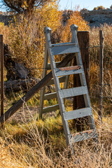 Ladder and Fence