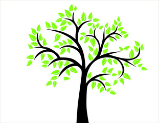 Download Free png Green Leaf Vector Tree, Decorative Pattern
