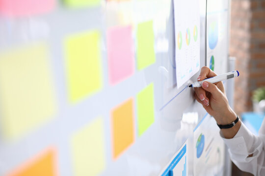 Woman draws charts on white board and holds presentation. Small and medium business development and training concept
