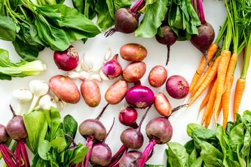 Harvest of vegetables. Home gardening. Top view
