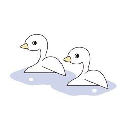 水面で並んで泳ぐ2羽のあひる