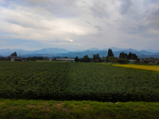 Layers of Mountains and Farms in Japan