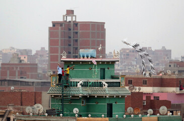 Children fly handmade kites from the roof, following the outbreak of the coronavirus disease (COVID-19), in Cairo