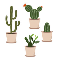 Set of cacti in pots