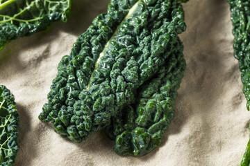 Raw Green Organic Tuscan Dinosaur Kale