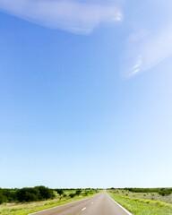 Photo sur Plexiglas Amérique du Sud Road Amidst Field Against Clear Sky