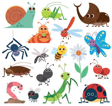 Vector Illustration of Cute insect set. Cartoon insects. beetle, butterfly, bee, snail. cockroach